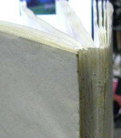 紙で新たに製本する